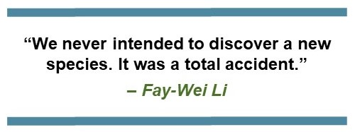 """Text that says, """"We never intended to discover a new species. It was a total accident."""" – Fay-Wei Li"""